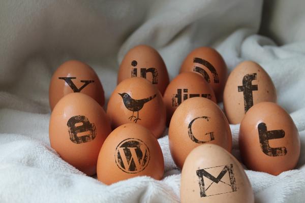 Huevos sociales copia